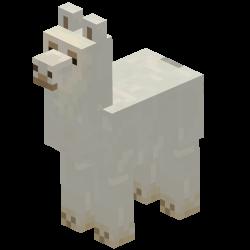250px-Llama_white